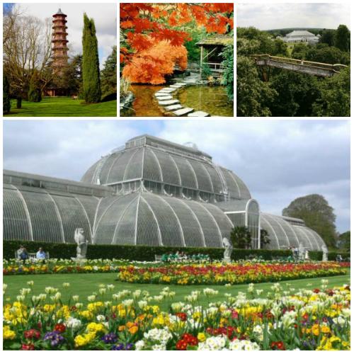 Ботанические сады Кью2